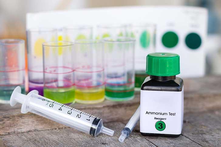 Un jour on taxera l'ammoniac émis par les élevages