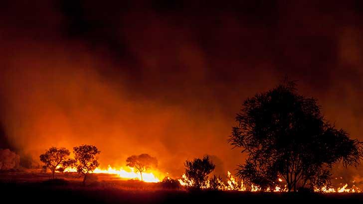 Les incendies catastrophiques sont les conséquences du monde qui se réchauffe