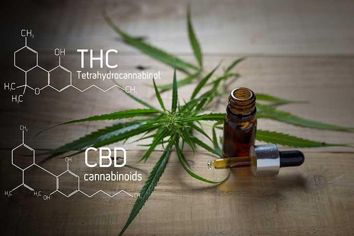 On n'a pas fini de parler du cannabis et de ses dérivés