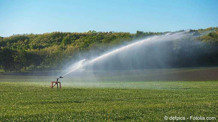 Le manque d'eau a donné naissance à un projet d'irrigation, aux eaux usées
