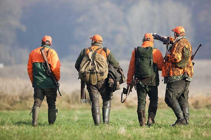 En 2020 chasse et biodiversité relèveront d'un établissement public commun