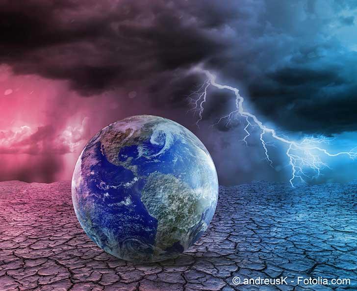 Le projet de loi Climat et résilience est jugé insuffisante par les écologistes