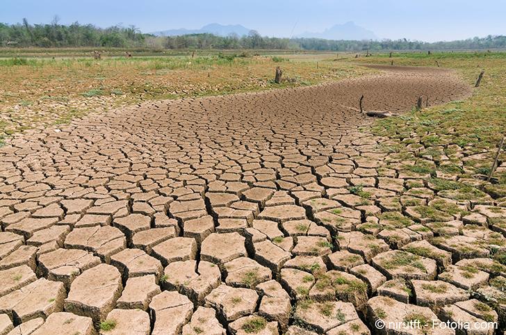 Le changement climatique n�est pas pris au s�rieux