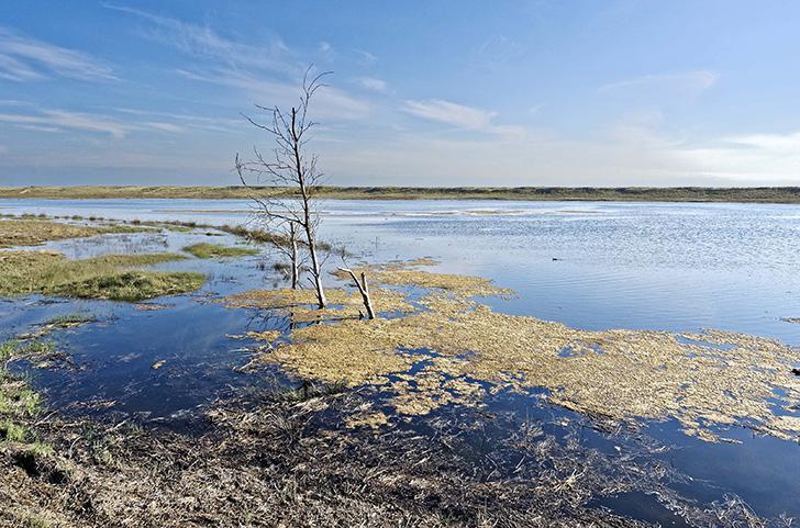 L�Etat cherche � se d�fendre contre l�accusation d�inaction climatique