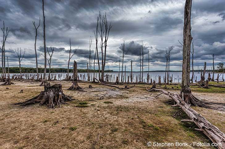 La COP 24 renvoi à la COP 25 la réduction des émissions de gaz à effet de serre