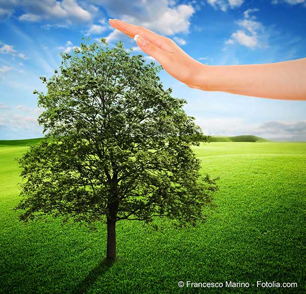 Les représentants des six cultes en France unis pour la défense du climat