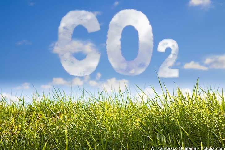 La chaîne alimentaire pourrait être à l'origine d'un tiers des émissions de CO2 mondiales