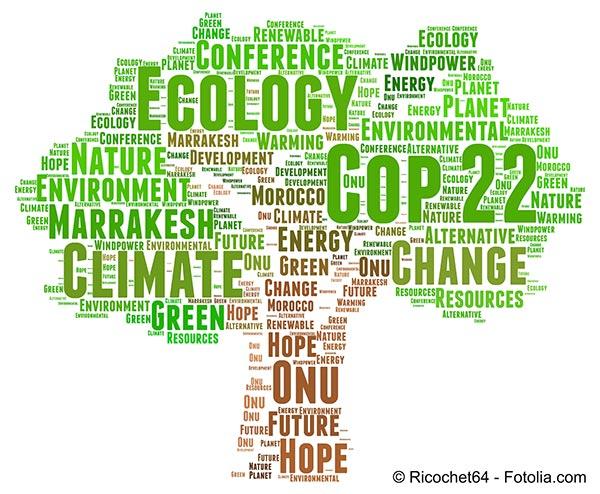 La COP 21 a rempli sa mission c'est à la COP 22 de poursuivre le travail
