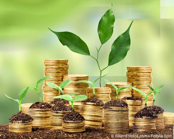 Le rôle du secteur financier dans la lutte contre le réchauffement climatique doit gagner en importance