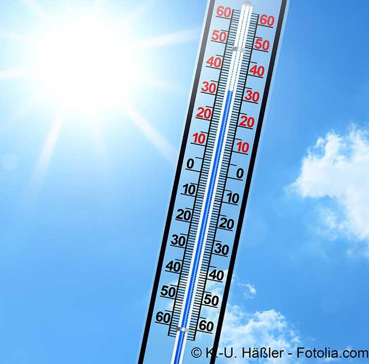 Désormais chaque année risque d'être l'année la plus chaude jamais connue