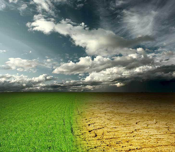 Convention citoyenne pour le climat : 150 mesures