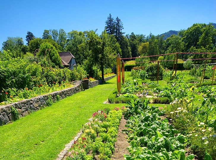 Les pratiques agricoles vertueuses pèseront sur le budget alimentation des Français