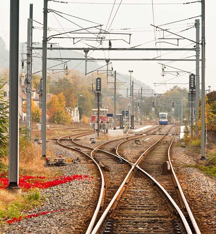 En France, le train renaîtra de ses cendres par l'Europe du rail et le retour des liaisons régionales