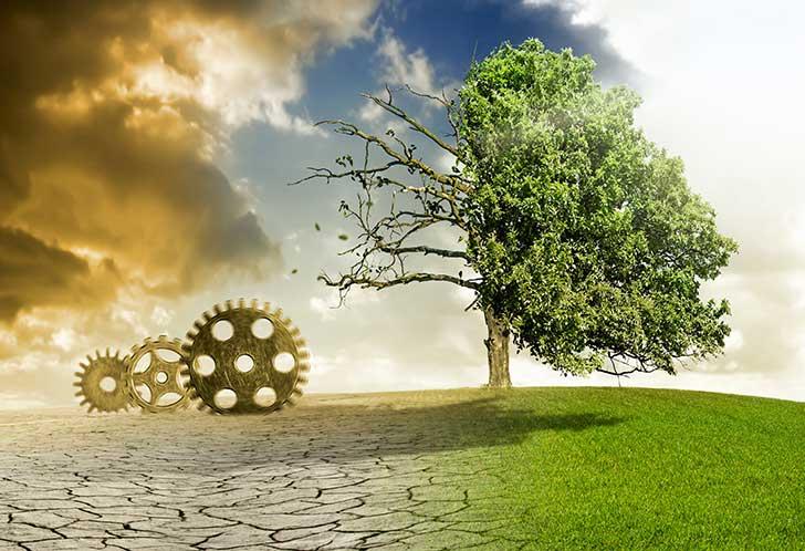 La Covid-19 est l'élément déclencheur de la lutte contre le réchauffement climatique