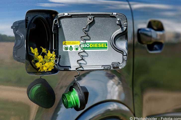 La France devra sans doute importer une partie du biodiesel dont elle veut disposer