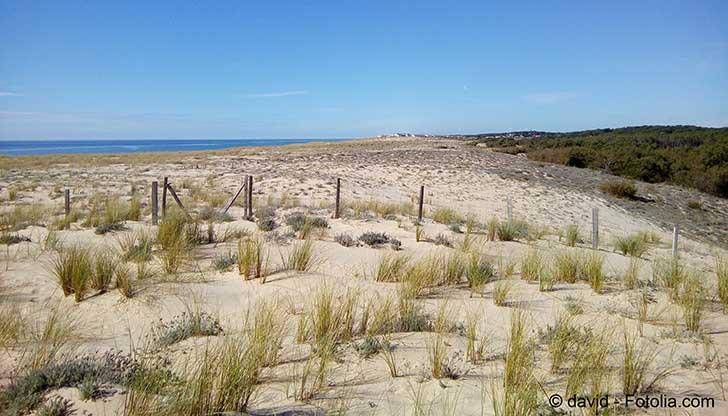 Le littoral français continue à s'éroder malgré une saison hivernale normale