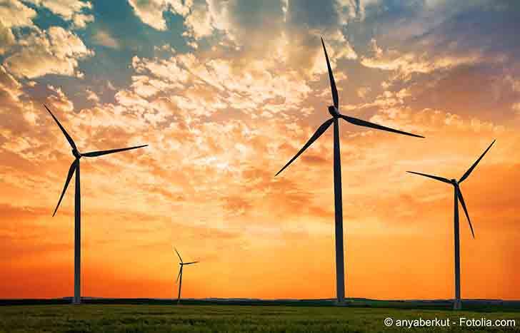 Selon l'OCDE la France peut mieux faire dans le domaine environnemental