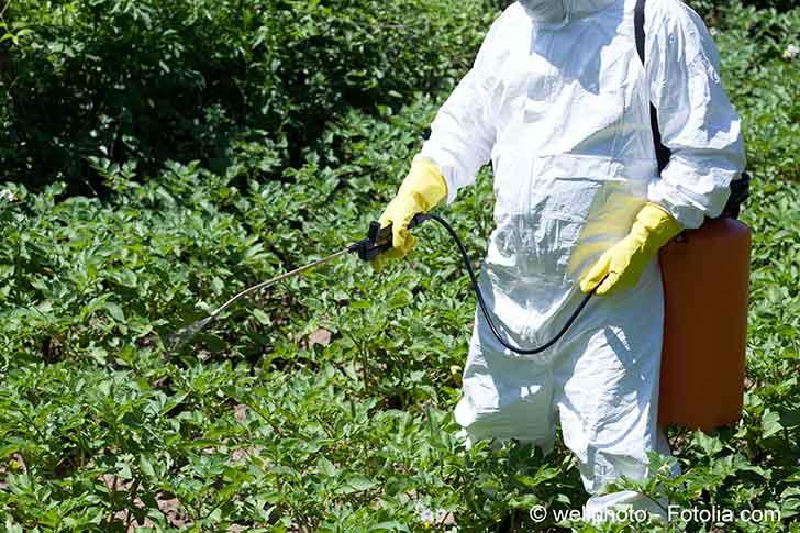 Sortie du glyphosate en trois ans, Nicolas Hulot admet des exceptions