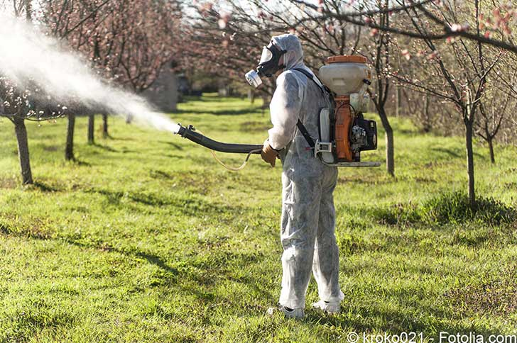 L�Europe a enfin interdit les insecticides n�onicotino�des