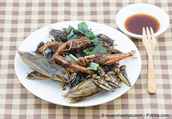 Tous les insectes ne sont pas bons à manger