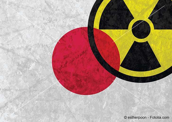 Le Japon ne peut pas se passer du nucléaire pour produire de l'électricité