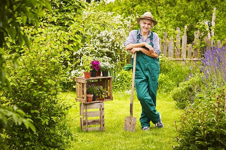 Les jardiniers amateurs n'ont plus accès aux pesticides