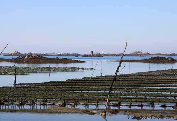 La montée des océans met en exergue l'intensité des marées