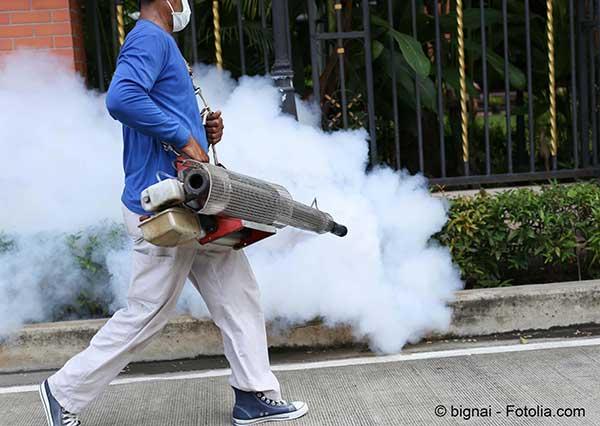 Le Brésil mobilise son armée pour lutter contre le virus Zika