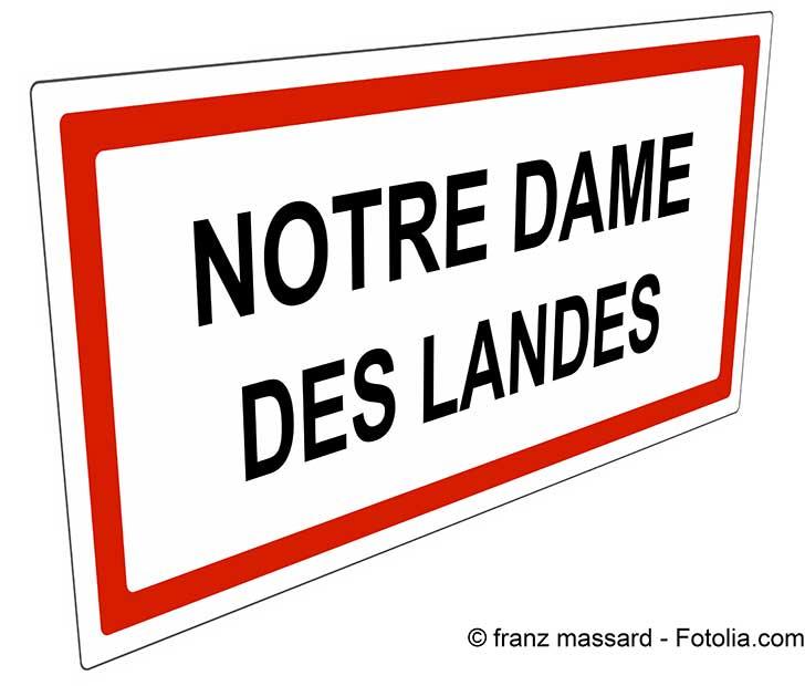 Le sort du transfert de l'aérodrome de Nantes se jouera avant la fin du mois