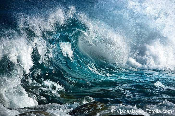 Les écosystèmes marins sont menacés par le réchauffement océanique
