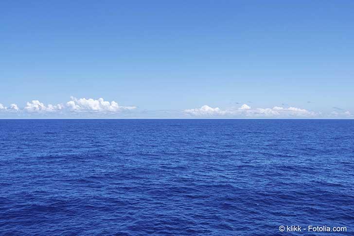 A l�ONU les n�gociations pour la protection de la haute mer s�intensifient