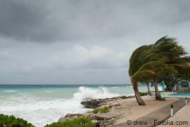 La saison cyclonique vient de battre tous les records dans l�Atlantique Nord