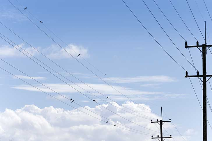 Les r�seaux des t�l�communications non enterr�s sont expos�s aux al�as climatiques