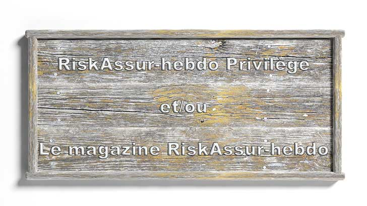 RiskAssur Privil�ge VS RiskAssur Magazine