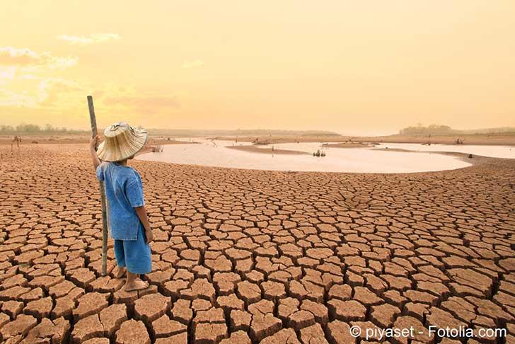 La vie sur une planète plus chaude… il est temps de s'adapter !