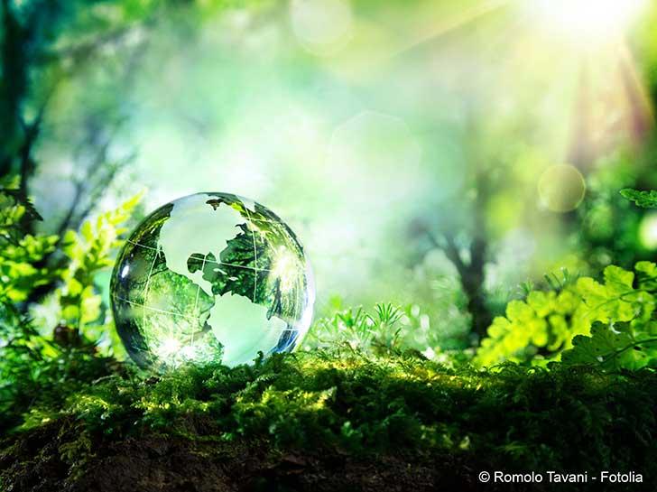 L'insertion de l'environnement dans la constitution reste à perfectionner