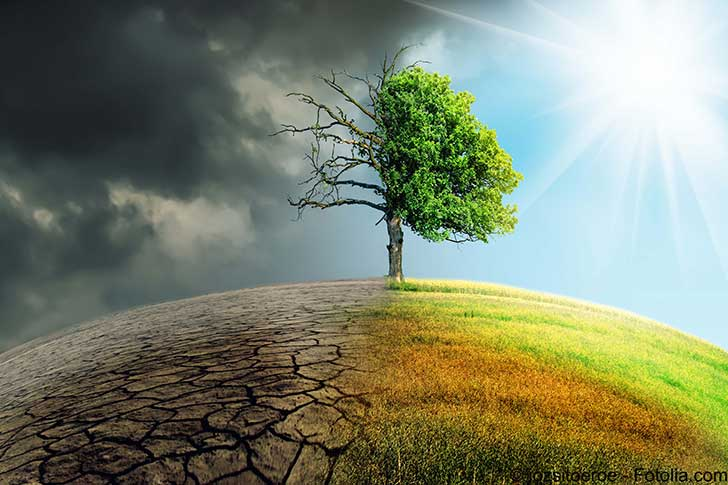 Il reste une chance de maintenir la vie sur Terre en donnant un coup de frein au r�chauffement climatique