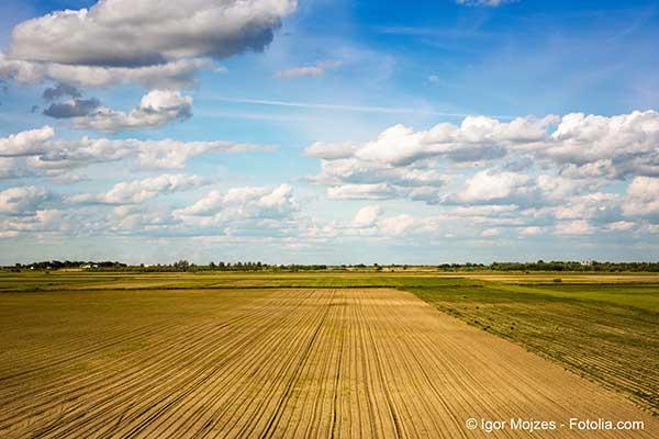 Les sols agricoles français méritent une meilleure protection