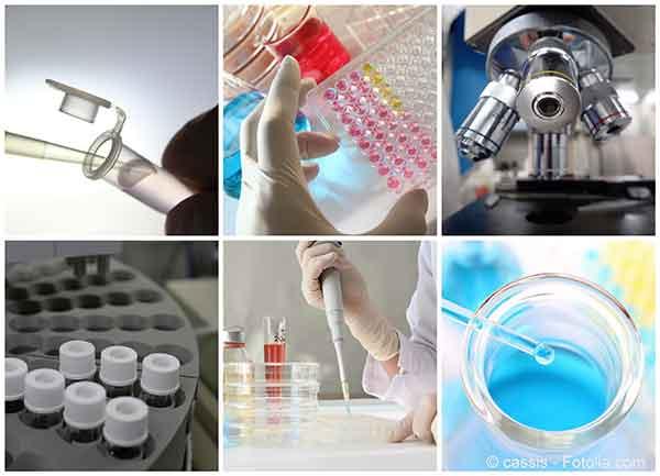Tester des molécules nouvelles avant mise sur le marché n'est jamais sans risques