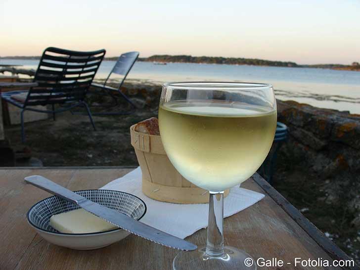 Le vin blanc viendra plus rapidement que l'on le pense de la Bretagne