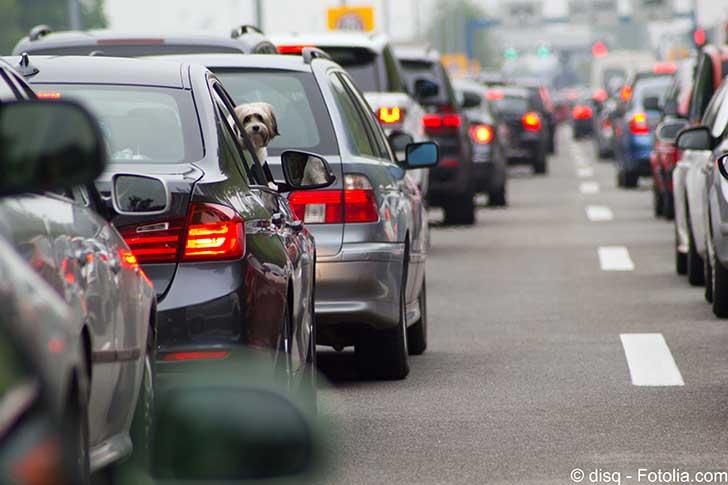 Dieselgate ou pas le remplacement des voitures polluantes prend du temps
